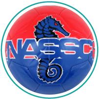 national sand soccer championships